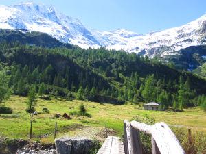Sommer-Wanderung  Hütte Altkolm  mit Aussicht auf den Hohen Sonnbblick 3.105 m Seehöhe